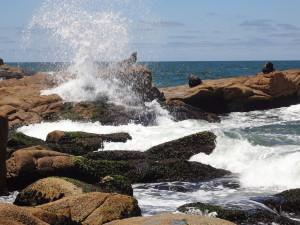 Wilder Atlantik Südamerika
