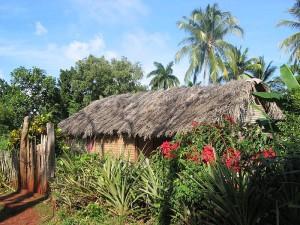 Kuba Choza in Baracoa